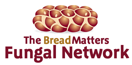 Bread Matters Fungal Network